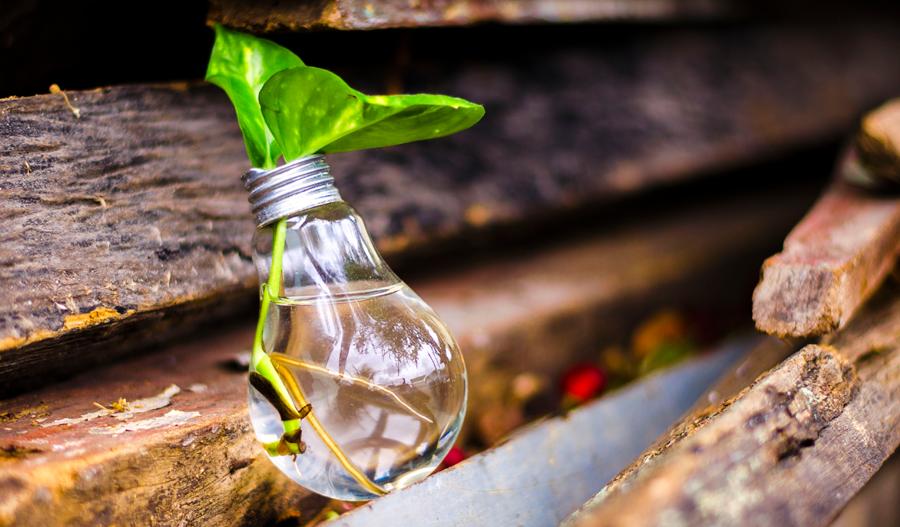 Помогни на Земята – инвестирай в екология и спести